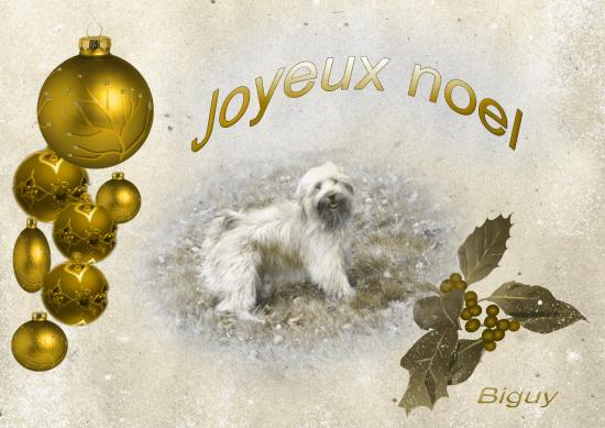 joyeuxnoel-orange_modifie-1.jpg